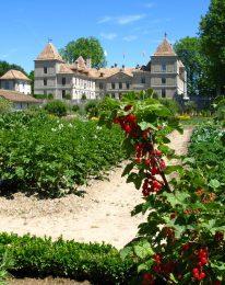 Le plus grand jardin potager historique de Suisse