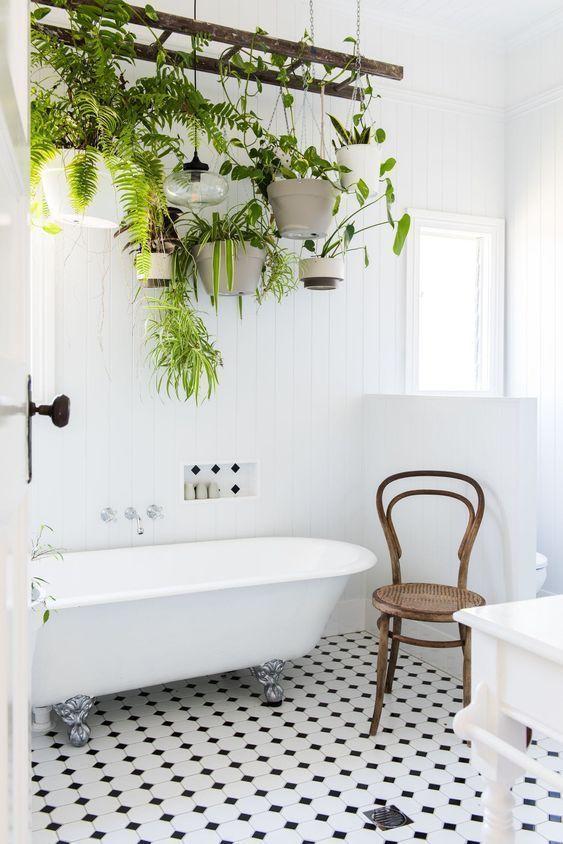 des-plantes-dans-ma-salle-de-bain