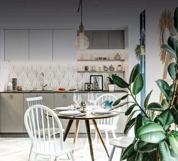 Annecy : Cherche appartement à réinventer