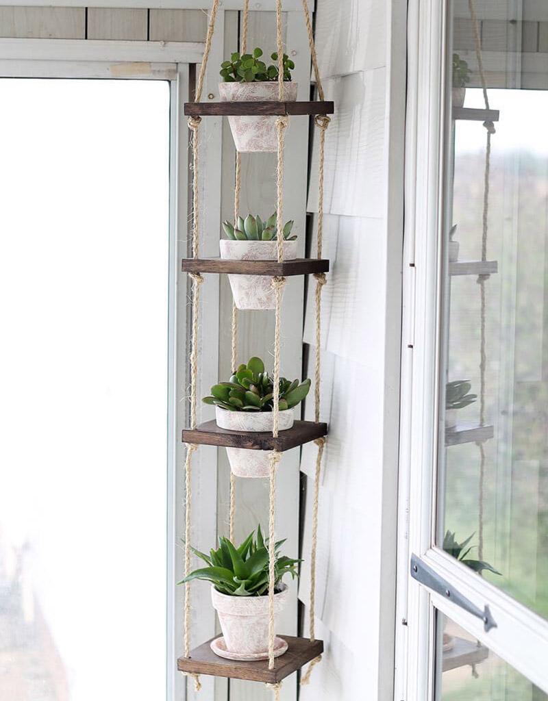 des-plantes-a-la-verticale