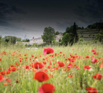 Week-end bien-être en Haute-Provence