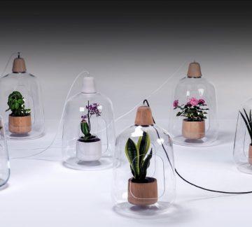 Jardins d'intérieur : cultivez design !
