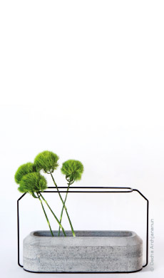 jardin-interieur-idees