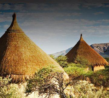 Hôtel Omaanda Namibie : immersion dans une réserve
