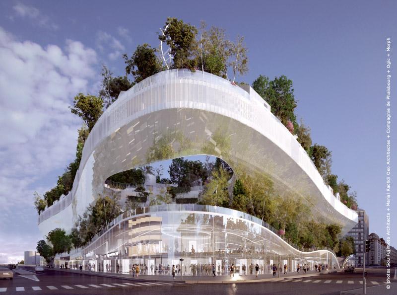 Projet-Mille-arbres-Paris