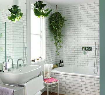 Des plantes dans ma salle de bain