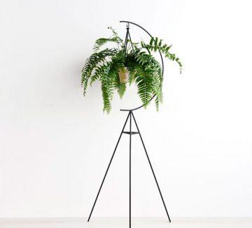 Des supports pour vos plantes