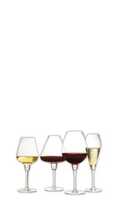 quel verre à vin choisir